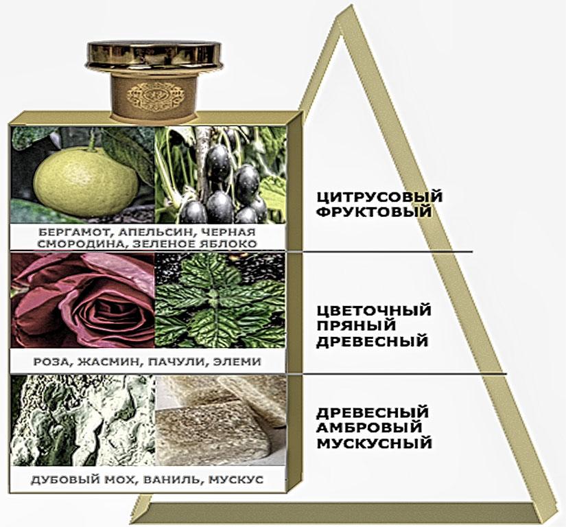 Состав ароматов мужских духов VICTORIOUS от Patrice Martin